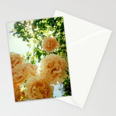 Summery Stationery Cards