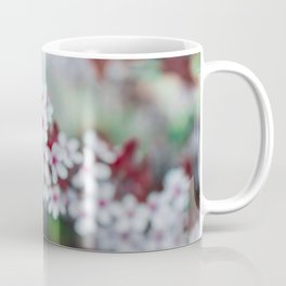 White Cherry Blossoms and Red Leaves Coffee Mug