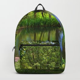Spring views Backpack