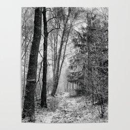 Winteress Poster