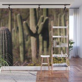 Cactus in Saguaro National Park Wall Mural