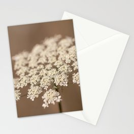 Delicate Lace Stationery Cards