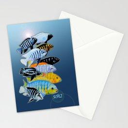 The Rare Mbuna Stationery Cards