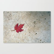 Red Leaf on Concrete Canvas Print