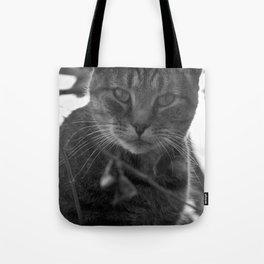 Winter Stare Tote Bag