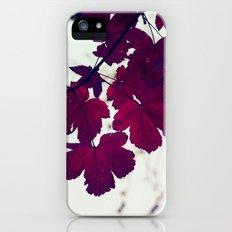 november iPhone (5, 5s) Slim Case