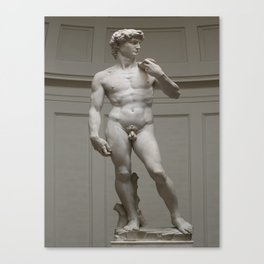 Michaelangelo's David Canvas Print