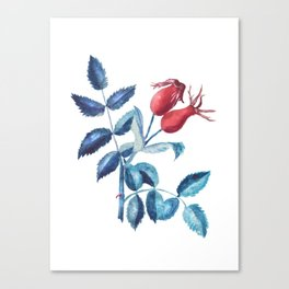 Watercolor Rose Hips Canvas Print