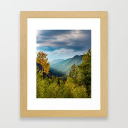 Sunlight Valley // Dense Forest View through the Autumn Colors in Colorado Framed Art Print