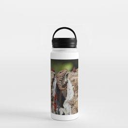 The random Lizard Water Bottle