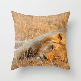 On Safari - Sleeping Lion Throw Pillow
