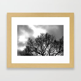 Branch out. Framed Art Print