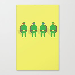 Super Turtle Brothers Canvas Print