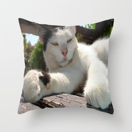 Black and White Bicolor Cat Lounging on A Park Bench Throw Pillow