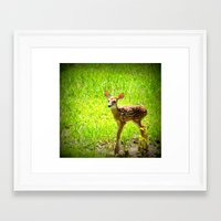 fawn Framed Art Prints featuring FAWN by 2sweet4words Designs