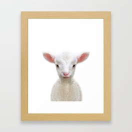 Baby Sheep Framed Art Print