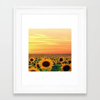 sunflower Framed Art Prints featuring Sunflower by Don't Be A Dick