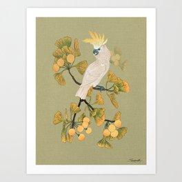 Cockatoo and Ginkgo Tree Art Print