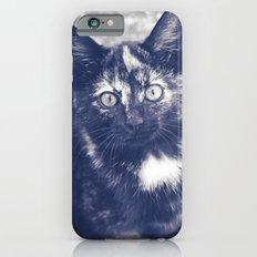 PEANUT THE KITTEN Slim Case iPhone 6