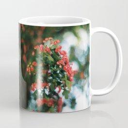 Doubled nature 1 Coffee Mug