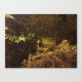 eery Canvas Print