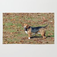 beagle Area & Throw Rugs featuring Beagle by Frankie Cat