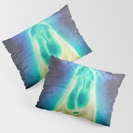 Blue Dick and Balls for the Walls Pillow Sham