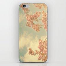 Spring Pink 02 iPhone & iPod Skin