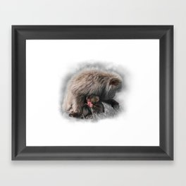 Baby Snow Monkey Framed Art Print