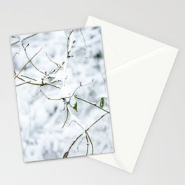 Winter forest covered with snow   fine art photo print in the netherlands   nature and travel photograpy Stationery Cards