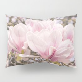 Blooming Magnolia in Montmartre Paris Pillow Sham