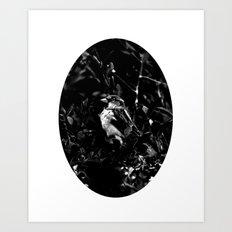 on the side of the bird's eye Art Print