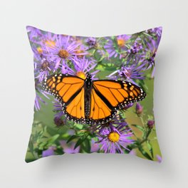 Monarch Butterfly on Wild Aster Flowers Throw Pillow