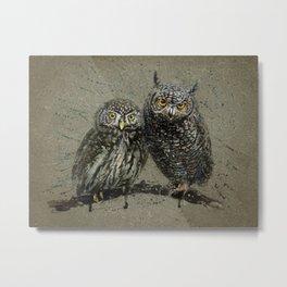 Little owl's background Metal Print