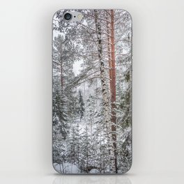 Winter in the Mountains iPhone Skin