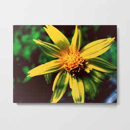 Vintage Yellow Flower Metal Print
