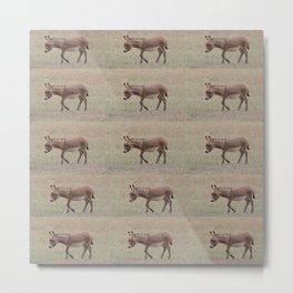 Baby Donkey Multiplied Metal Print