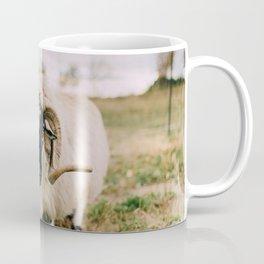 The Curious Sheep Coffee Mug