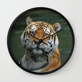 Tiger_2015_0622 Wall Clock