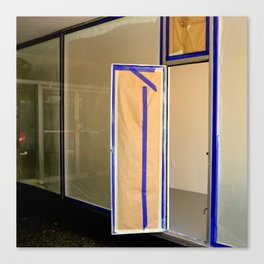 Display Windows For Dummies Canvas Print