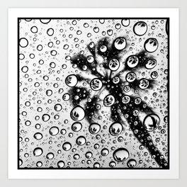 Palm Universe Art Print