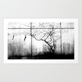 Birds and the Trees Art Print