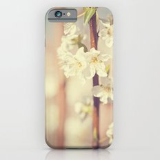 He brought me spring Slim Case iPhone 6s