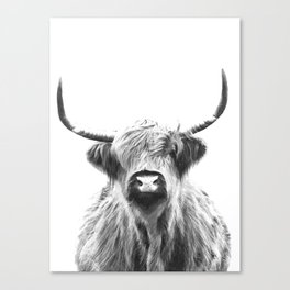 Black and White Highland Cow Portrait Canvas Print