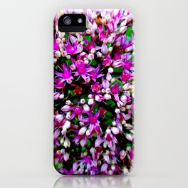 Butterfly Stonecrop iPhone Case