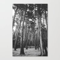 giants Canvas Prints featuring Giants by Ariane Moshayedi Photography