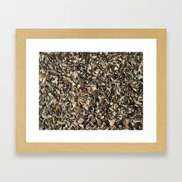 Dead laves on ground, autumn season Framed Art Print