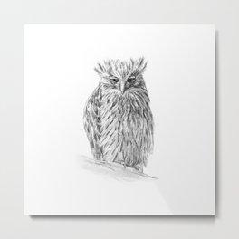 The Buffy Fish Owl Metal Print
