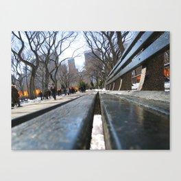 Central Park, New York City, U.S.A Canvas Print