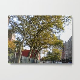 Greenspace, NYC Metal Print